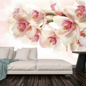 Fototapete, Orhidei violet în apă pe fundalul unui perete alb