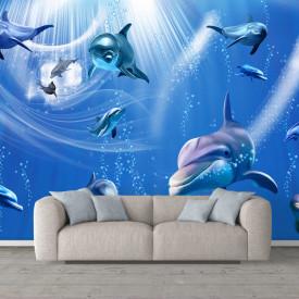 Fototapete Pentru Copii, Delfinii sub apă