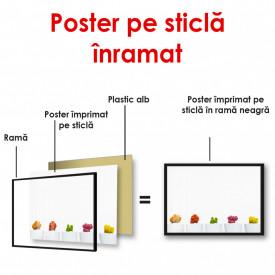 Poster, Cactuși multicolori