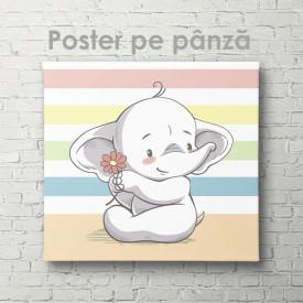 Poster, Elefant drăguț