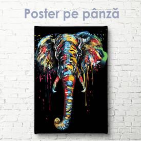 Poster, Elefant plin de farmec