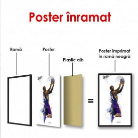 Poster, Moment de glorie