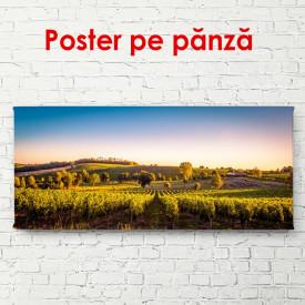 Poster, Peisaj cu un câmp frumos