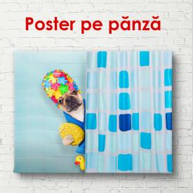 Poster, Surpriză