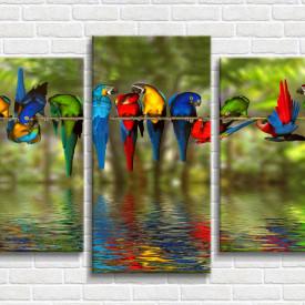 Tablou modular, Papagali colorati