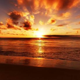 Fototapet, Dimineața însorită