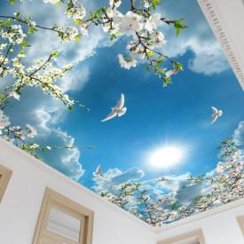Fototapet, Flori de primăvară de culoare albă