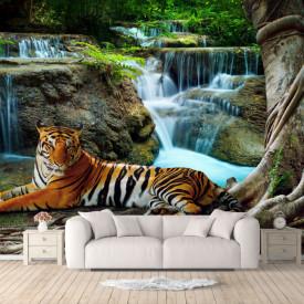 Fototapet, Tigrul se odihnește lângă cascadă
