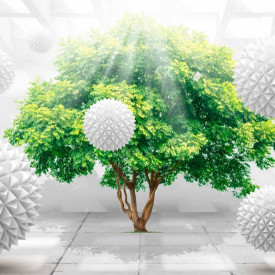 Fototapete 3D, Un copac verde și bile albe.