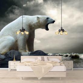 Fototapete Alb-Negru, Un urs polar pe fundalul cerului