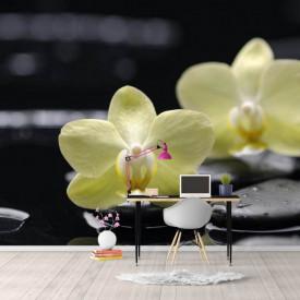 Fototapete, Pietre negre și flori