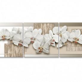 Multicanvas, Orhideea albe pe un fond bej