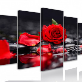 Multicanvas, Trandafirul roșu pe pietre negre și un fundal negru