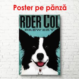Poster, Câine alb-negru pe fundal albastru