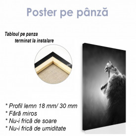 Poster, Leul groaznic