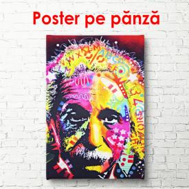 Poster, Portretul colorat al lui Newton