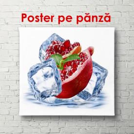 Poster, Rodie și cuburi de gheață pe un fundal alb