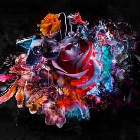 Poster, Trandafir abstract pe fundal negru