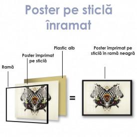 Poster, Zebrele abstracte