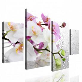 Tablou modular, Orhidee roz și alb