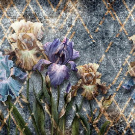 Fototapet, Iriși pe fundal abstract