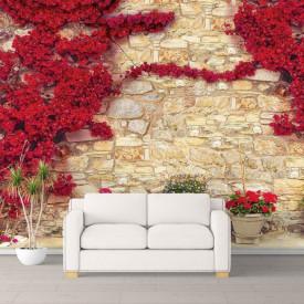Fototapete, Copaci roșii lângă perete