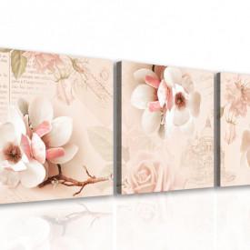 Multicanvas, Flori delicate de roz