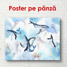 Poster, Balene în apă