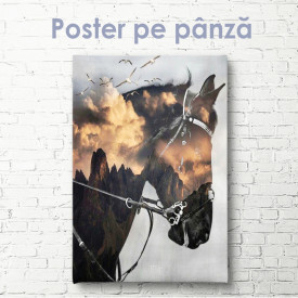 Poster, Cal abstract