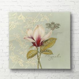 Poster, Floarea delicată de magnolie pe un fundal albastru