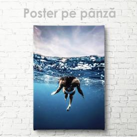 Poster, In ocean