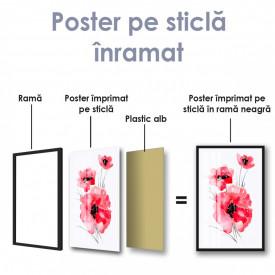 Poster, Maci de acuarelă