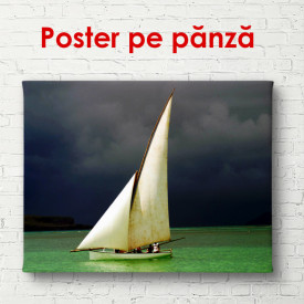 Poster, Navă albă în mare