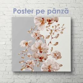 Poster, Ramură de orhidee roz pe fundal alb gri