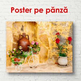 Poster, Strada cu ghivece de flori