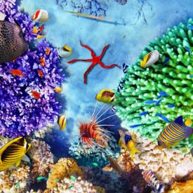 Fototapet, Recifi de corali și pești multicolori