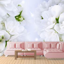 Fototapete, Flori albe delicate