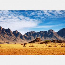 Fototapete, Plimbare în deșert