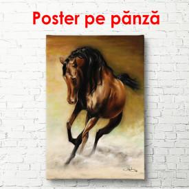 Poster, Cal maro în galop