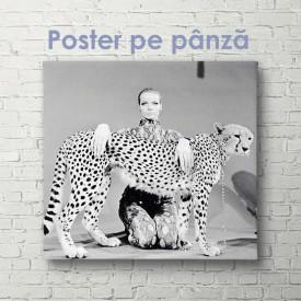 Poster, Fată cu leopard