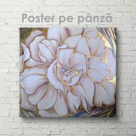 Poster, Floare albă cu margini aurii