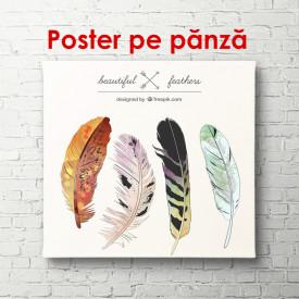 Poster, Penele păsărilor de foc