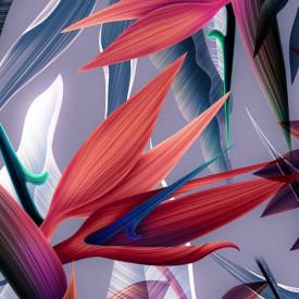 Poster, Planta neobișnuită strălucitoare