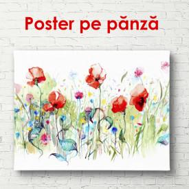 Poster, Poiana desenată