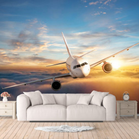 Fototapet, Avionul pe cer