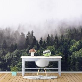 Fototapet, Ceața din pădure