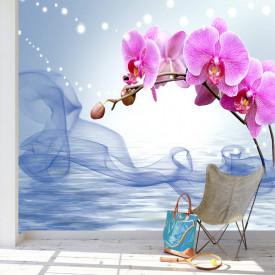 Fototapet, Orhidee roz pe fundal albastru