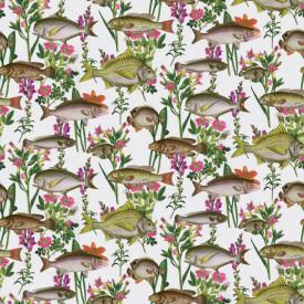 Fototapet, Pește colorat pe un fundal alb