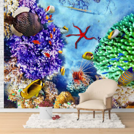 Fototapete, Recife coraliere și peștii multicolori