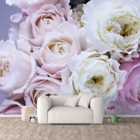 Fototapete, Trandafiri pe un fundal roz